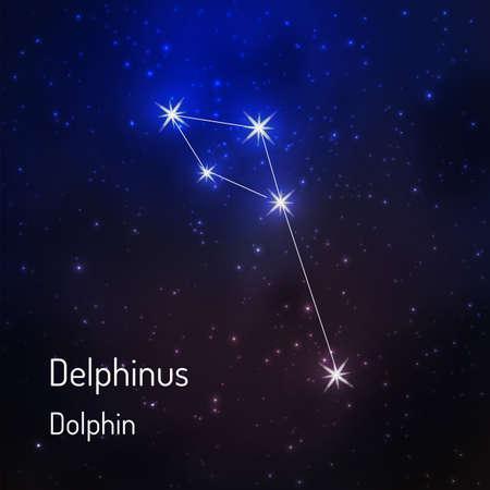 夜の星空の Delphinius (イルカ) 星座。ベクトル図
