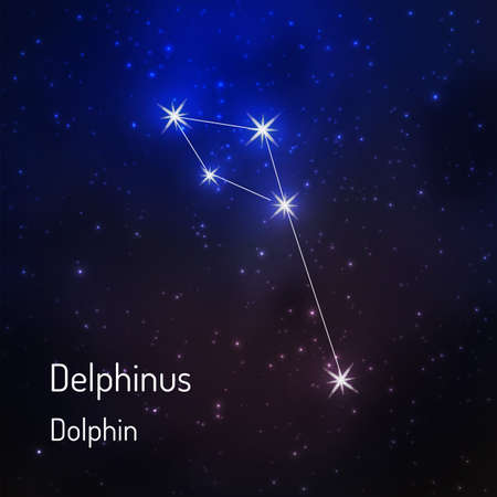 Delphinius (dolphin) constellation in the night starry sky. Vector illustration