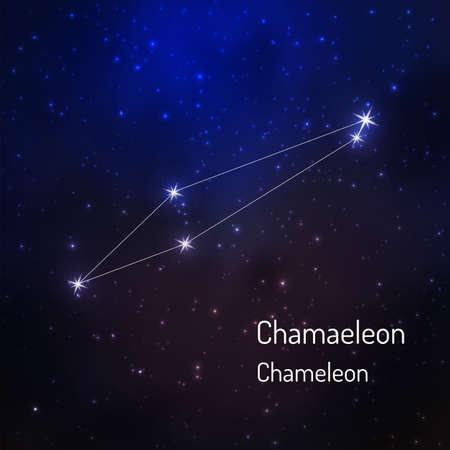 夜の星空のカメレオン星座。ベクトル図  イラスト・ベクター素材