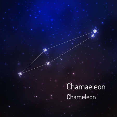 Chameleon constellation in the night starry sky. Vector illustration Banco de Imagens - 73033686