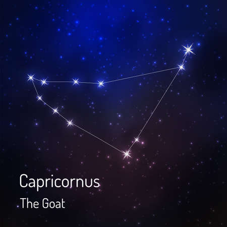 Capricornus (goat) constellation in the night starry sky. Vector illustration