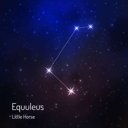 Constelación de Equuleus (pequeño caballo) en el cielo estrellado de la noche. Ilustración del vector Ilustración de vector