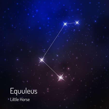 Costellazione di Equuleus (Little Horse) nel cielo stellato notturno. Illustrazione vettoriale