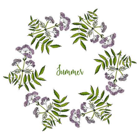 Hand drawing wild herbs wreath - valerian Illustration