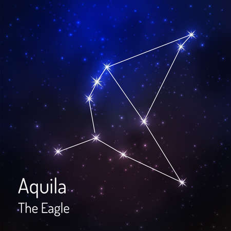 Aquila (eagle) constellation in the night starry sky. illustration