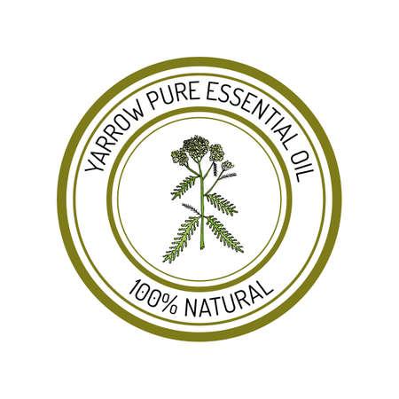 yarrow: Yarrow, essential oil label, aromatic plant