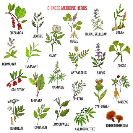 Chinese medicinal herbs Ilustracja