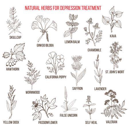 Beste pflanzliche Heilmittel für Deppression