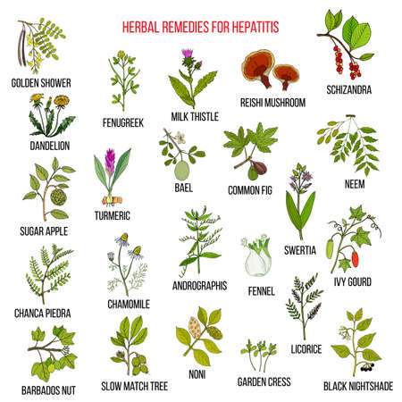 Best herbal remedies for hepatitis