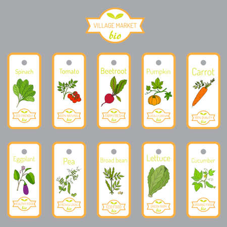 broad: Set of vector labels with hand drawn vegetables