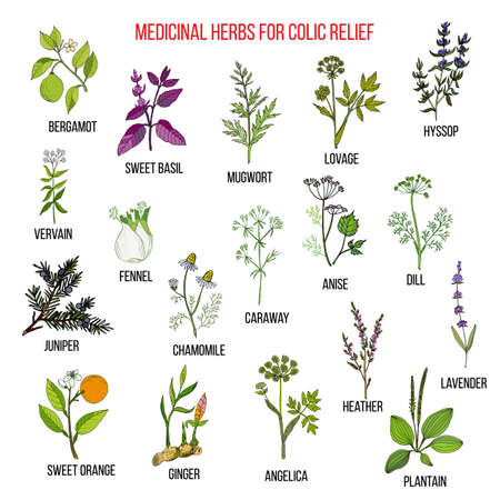 Best herbal remedies for colic relief