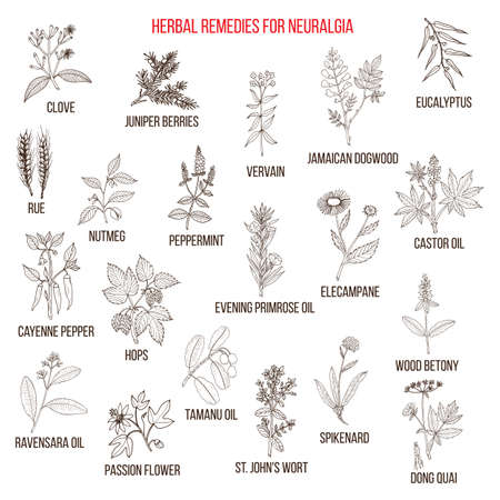 Best herbal remedies for neuralgia Иллюстрация