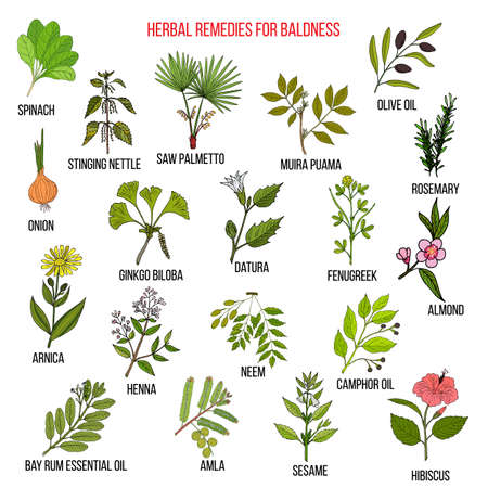 Herbal remedies for baldness isolated on white