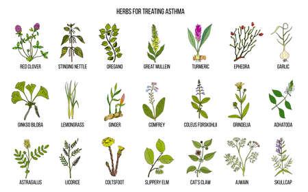 Natuurlijke kruidencollectie voor behandeling van astma