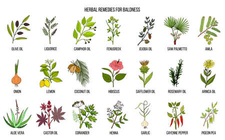 Best herbal remedies for baldness Ilustracja