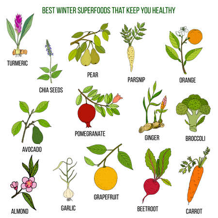 Best winter superfoods that keep you healthy Stock Vector - 95275551