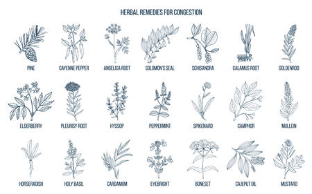 Collection of natural herbs for congestion