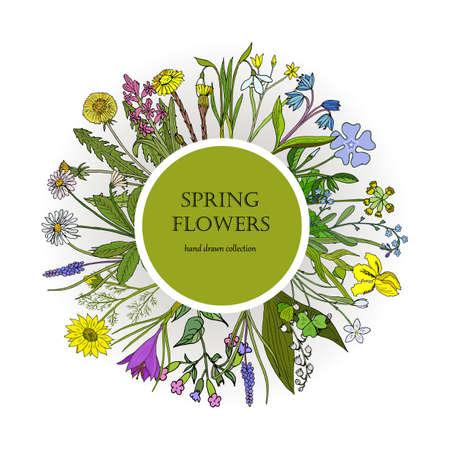 Spring flowers set 版權商用圖片 - 99872261