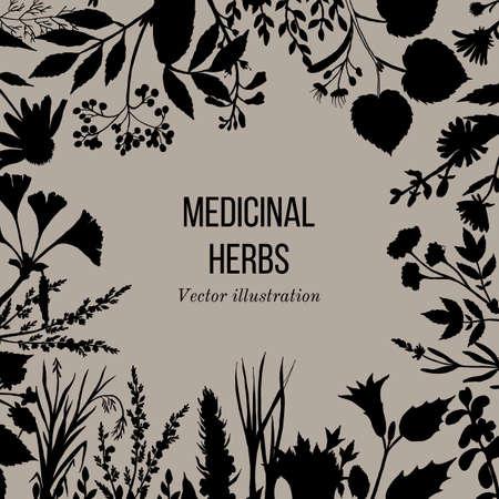 Vintage Sammlung von handgezeichneten Heilkräutern und Pflanzen. Vektor-Illustration Vektorgrafik