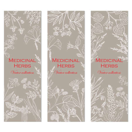 Banners with hand drawn medicinal herbs and plants. Vector illustration