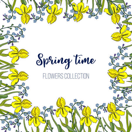 Spring flowers iris and forget-me-not frame. Hand drawn botanical vector illustration