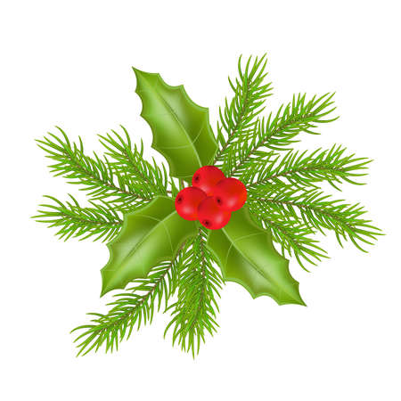 Christmas composition with holly green leaves and red berries. Vector illustration Ilustração