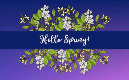 Spring blossom card with apple branch and forsythia, vector illustration Illustration