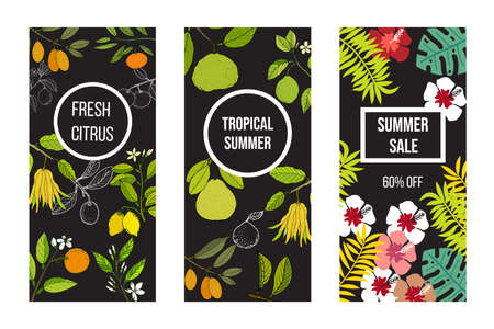 Summer banner set with citrus fruits, tropical leaves and flowers on dark background. Vector illustration