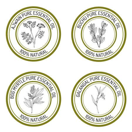 Set of essential oil labels Illustration