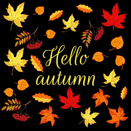 Hello autumn card with hand drawn colored autumn leaves. Vector illustration