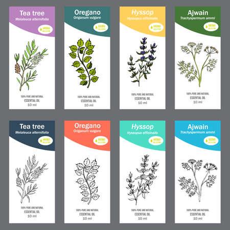 Set of essential oil labels. Hand drawn vector illustration Illustration