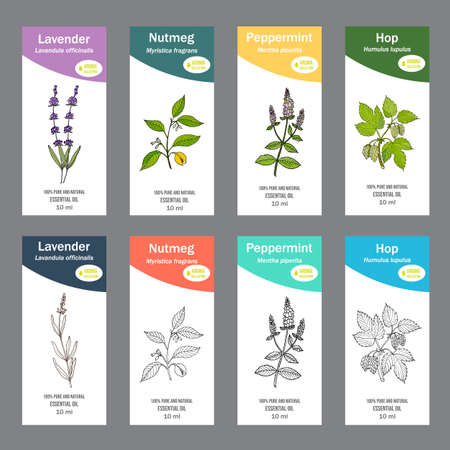 Set of essential oil labels. Hand drawn vector illustration Ilustração