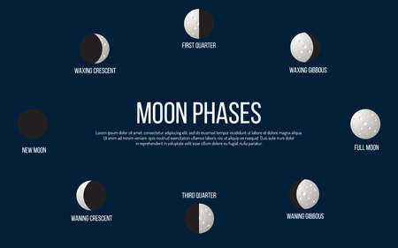 Lunar phases from new moon to full. Vector illustration