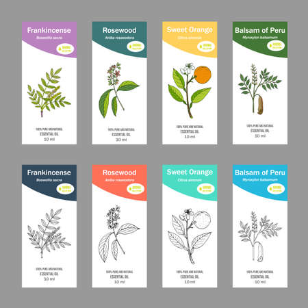Set of essential oil labels Vettoriali