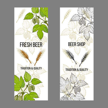 Beer and brewery labels, design elements with hops and barley