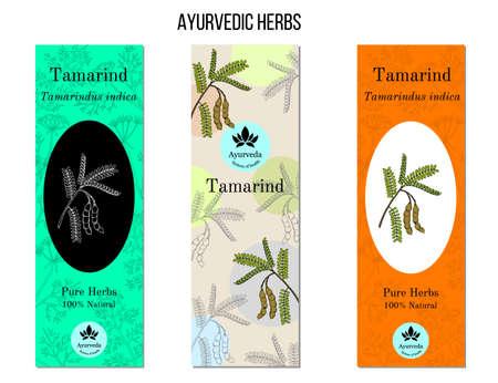 Ayurvedic herbs banners. Tamarind Tamarindus indica