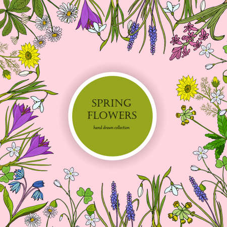 Spring flowers frame Ilustração