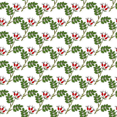 Seamless pattern with hand drawn dog rose Vettoriali
