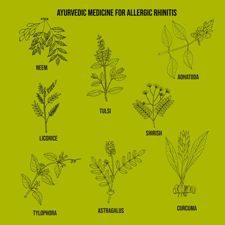 Best ayurvedic herbs for allergic rhinitis Banco de Imagens - 150288381