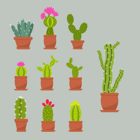 Home succulent plants cactus in ceramic pots. Flat style vector illustration. Vectores