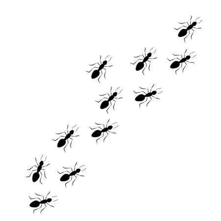 Worker ants marching in a line, black silhouette. Vector illustration