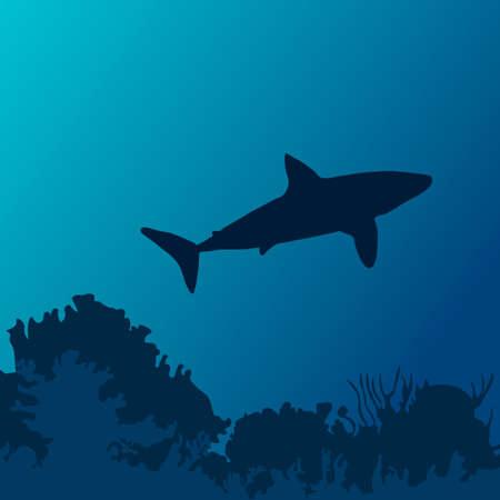 Ocean underwater world with shark silhouette. Vector illustration