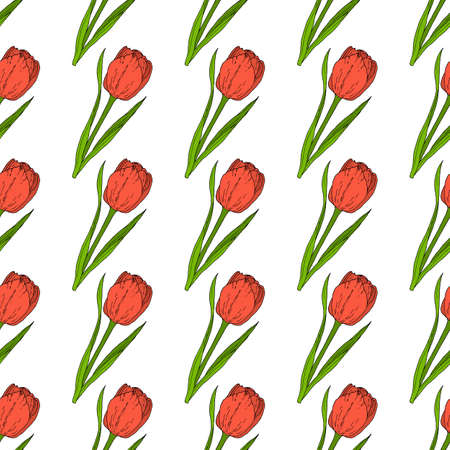 Seamless pattern of red tulip