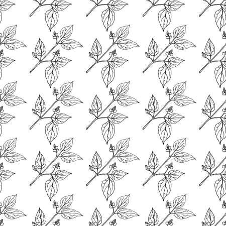 Seamless pattern with Fish mint Houttuynia cordata