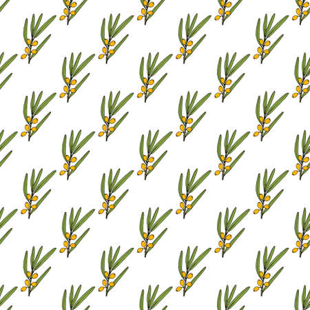 Seamless pattern with Sea-buckthorn