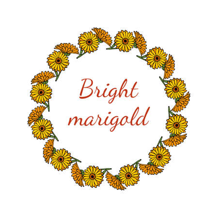 Greeting card template with round frame wreath of calendula Иллюстрация