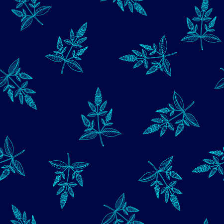 Seamless pattern with peppermint Mentha piperita