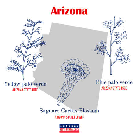 Arizona. Set of USA official state symbols