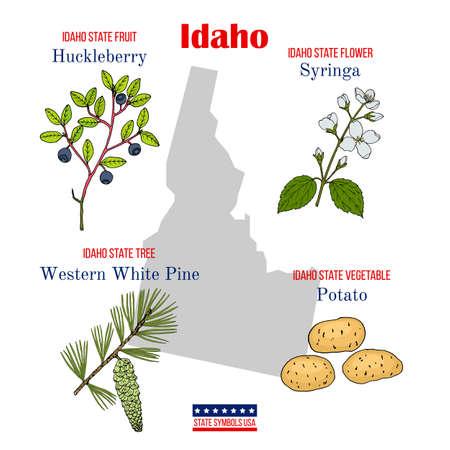 Idaho. Set of USA official state symbols