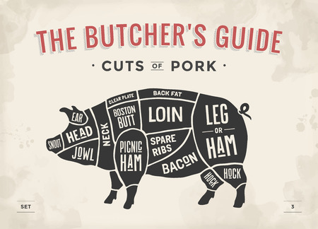 pork meat: Cut of meat set. Poster Butcher diagram, scheme and guide - Pork. Vintage typographic hand-drawn. Vector illustration